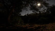 Time-lapse of moonrise over a tree swing.