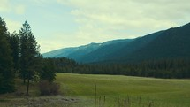 Montana mountains and green grass