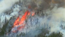 Forest fire on a hillside.