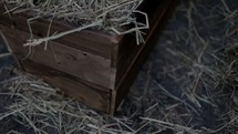 The manger filled with hay in the stable