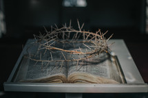 crown of thorns over the pages of a Bible