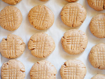 rows of peanut butter cookies