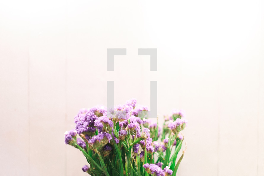 bouquet of tiny purple flowers