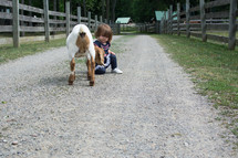 a toddler girl petting a  goat on a farm
