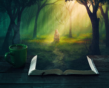 fantasy, book, reading, outdoors, woman, forest, sunlight, mug, path, magical, fairy tale