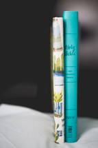 Bible and journal spines