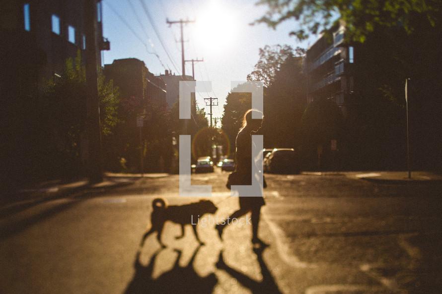 Woman walking dog across the street