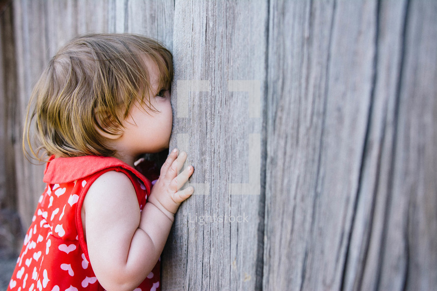 a child peeking through a cracked gate