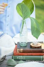 leaves, vase, tea candle, candle, bottle, coke bottle, glass bottle, soda bottle, books, stack, outdoors, table