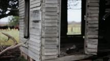 old abandoned homestead