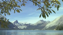 Tree limb blowing in the wind in front of a lake and mountain range.