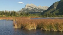 Water movement on a lake with marsh grass at the foot of mountains.