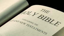 The Holy Bible - The old and new testaments
