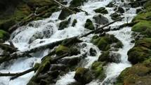flowing spring