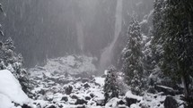Snowfall at Yosemite.