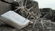 Crown of thorns next to an open Bible sitting on a rock. John 19 when the soldiers mock Jesus.