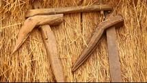 primitive harvest tools