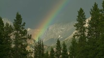 Rainbow over the mountains surrounded by trees.