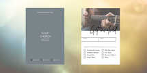 Ministry Script Connection Card Set