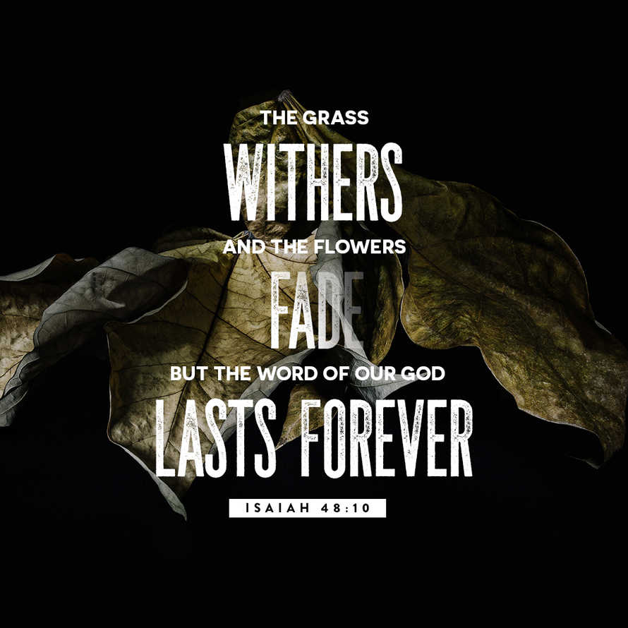 The Word Lasts Forever –Isaiah 48:10