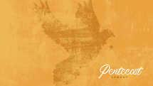 Pentecost Sunday Slides