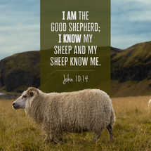 John 10:14 Social Packet