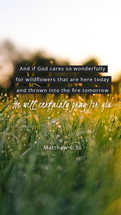 And if God cares so wonderfully for wildflowers