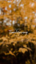 Thanksgiving Story Graphic