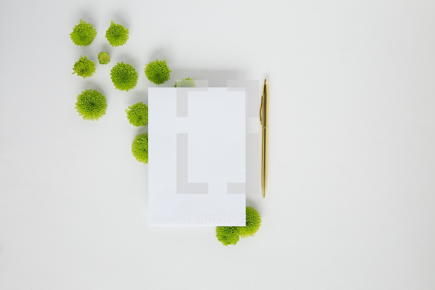 pen, envelope, and green mums on a white background