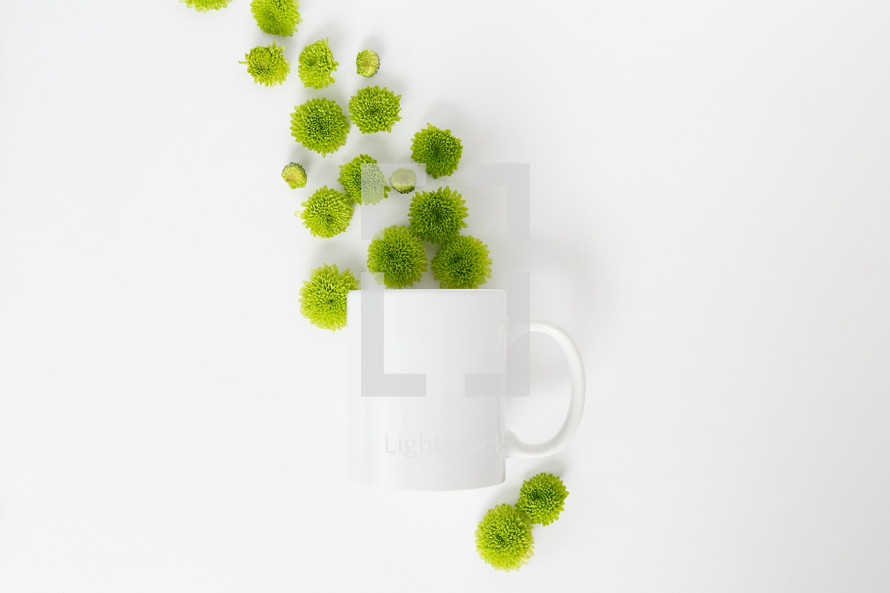 green mums and white mug on a white background
