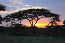 Ethiopian Sunrise