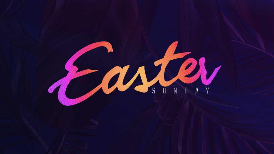 Easter Sunday – Purple
