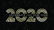 Celebrate 2020 Slide Set