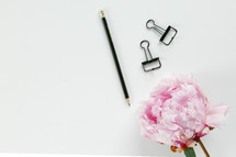 pencil, clips, and pink flower on a white background