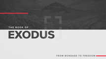 The Book of Exodus: From Bondage to Freedom