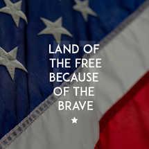Veterans Day Social Media Graphic