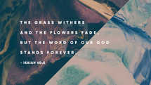 The grass withers and the flowers face, but the word of our God stands forever. – Isaiah 40:8