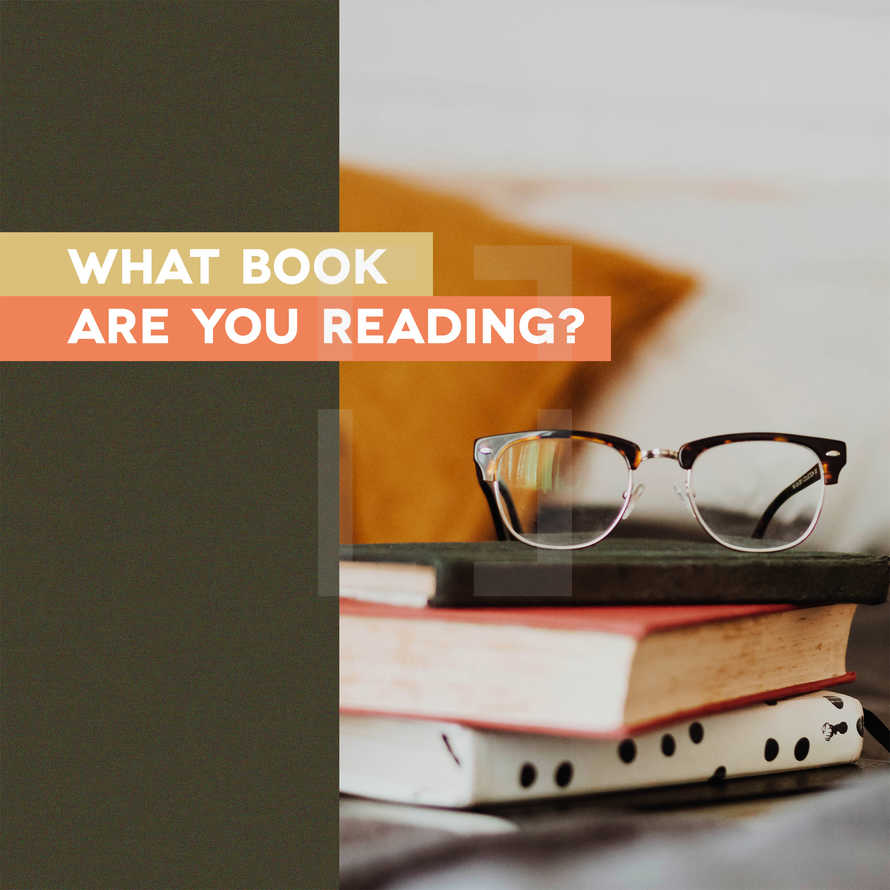 What book are you reading?