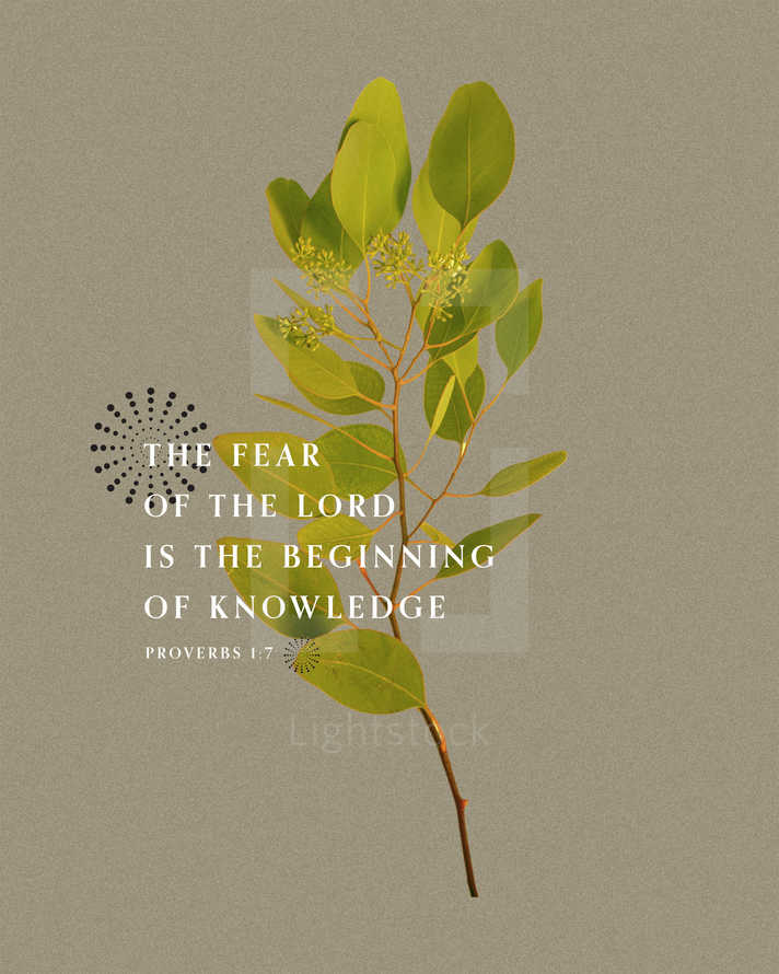 The fear of the LORD is the beginning of knowledge. – Proverbs 1:7