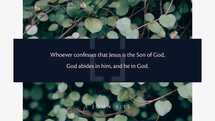 Whoever confesses that Jesus is the Son of God, God abides in him, and he in God. – 1 John 4:15