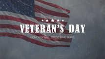 Veteran's Day Slides