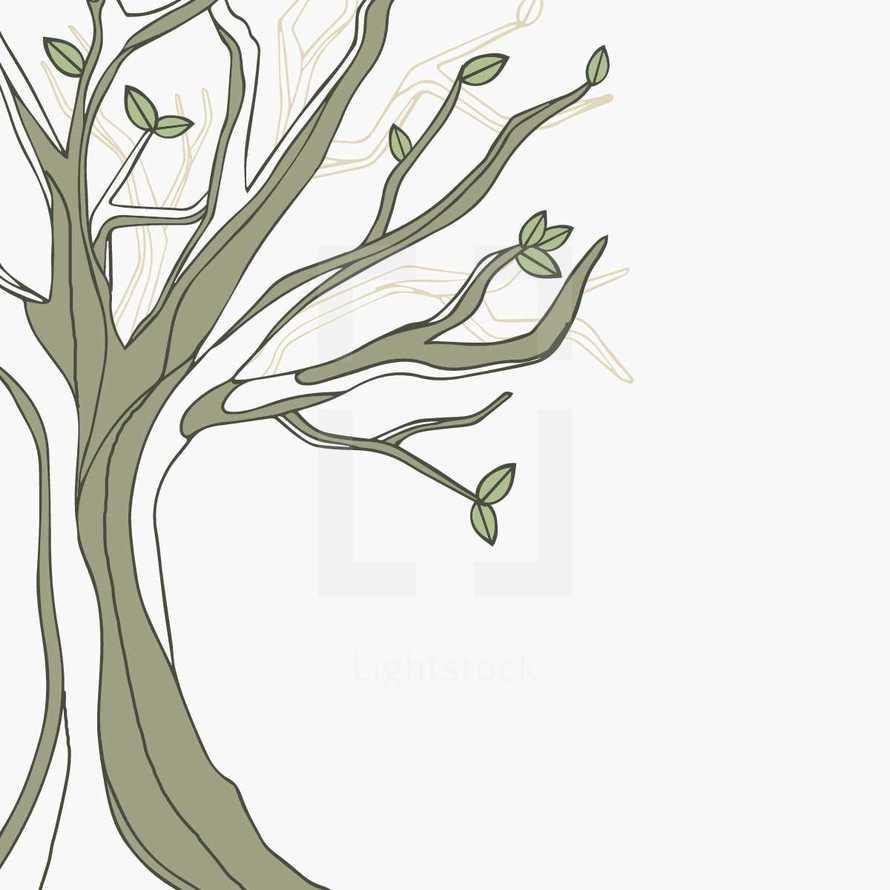 hand drawn tree illustration.
