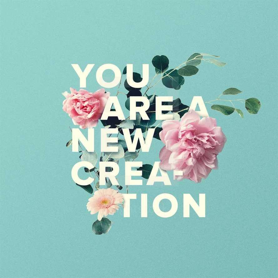 You are a new creation.