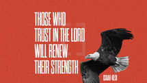 Those who trust in the LORD will renew their strength. – Isaiah 40:31