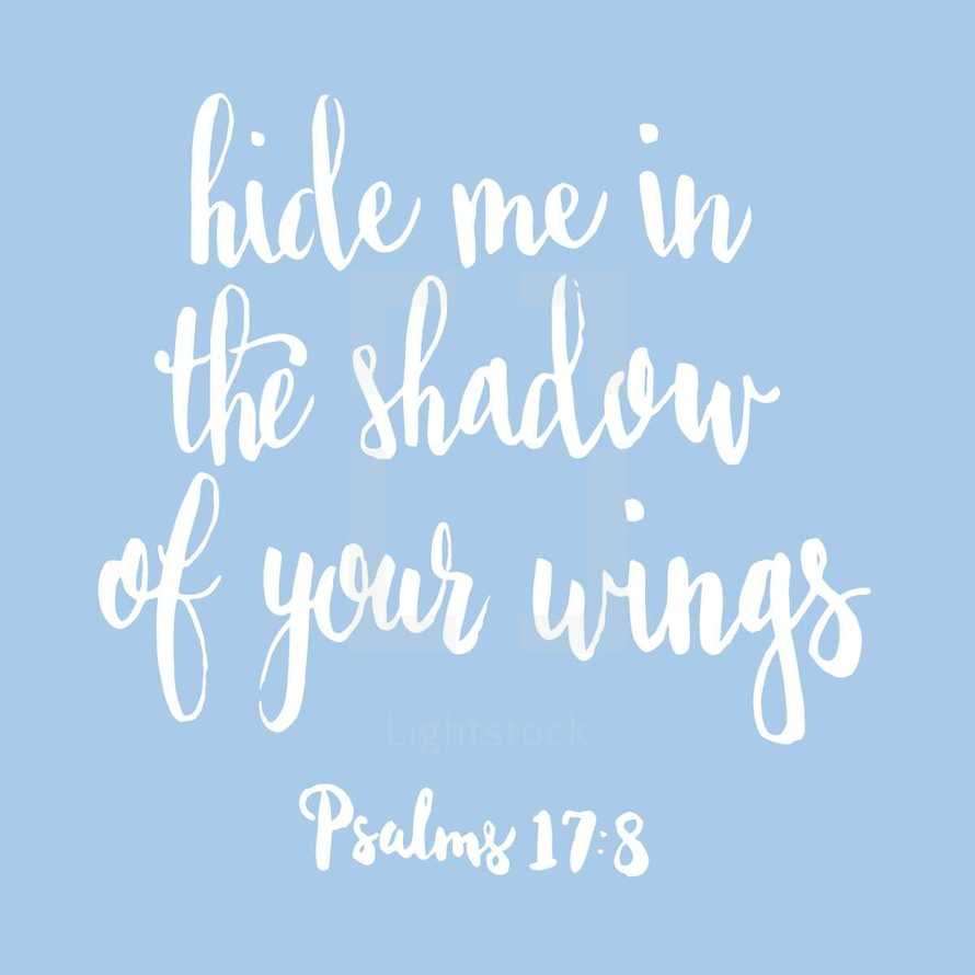 hide me in the shadow of your wings, Psalms 17:8
