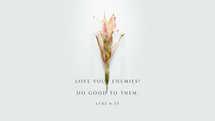 Love your enemies! Do good to them. – Luke 6:35