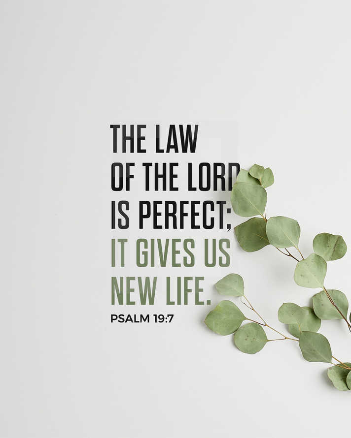 The Law of the LORD is perfect; it gives us new life. – Psalm 19:7
