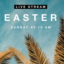 Easter Live Stream Social Graphic.