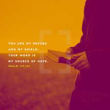 You are my refuge and my shield; your word is my source of hope. – Psalms 119:114