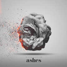 He gives beauty for ashes.